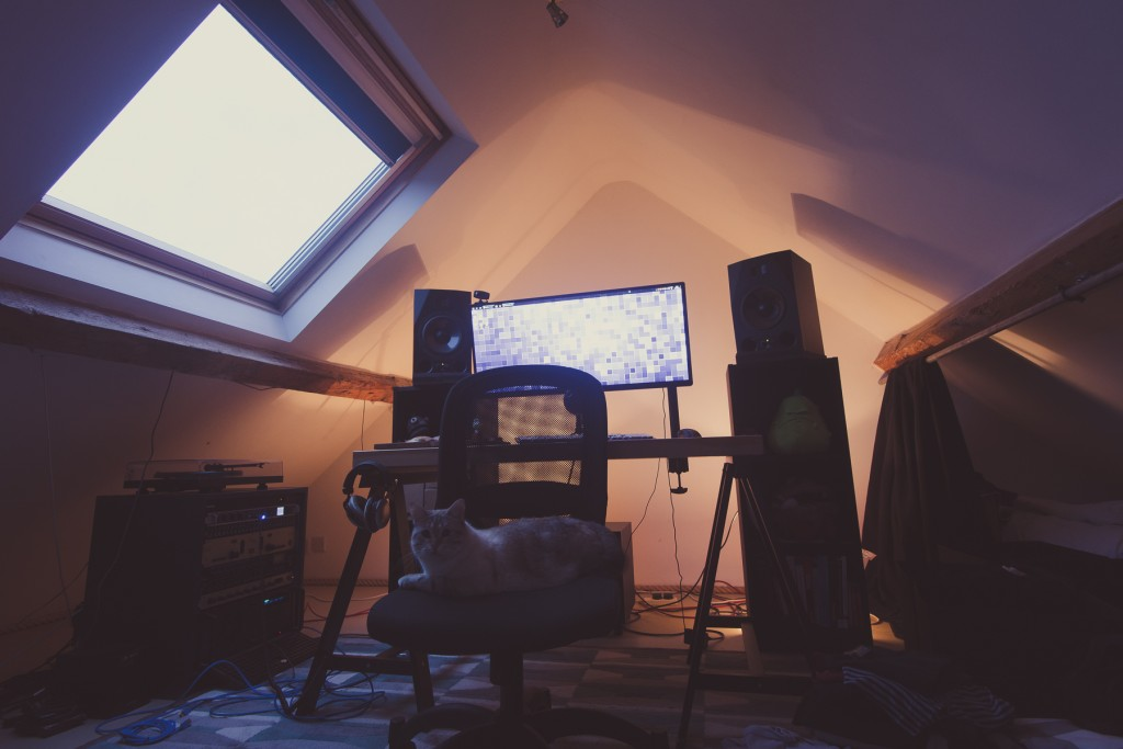 spiky studio sound design cat audio sound designer
